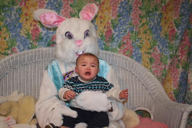 h bunny